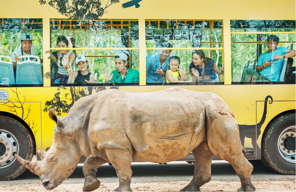 Ghé thăm gia đình Tê giác