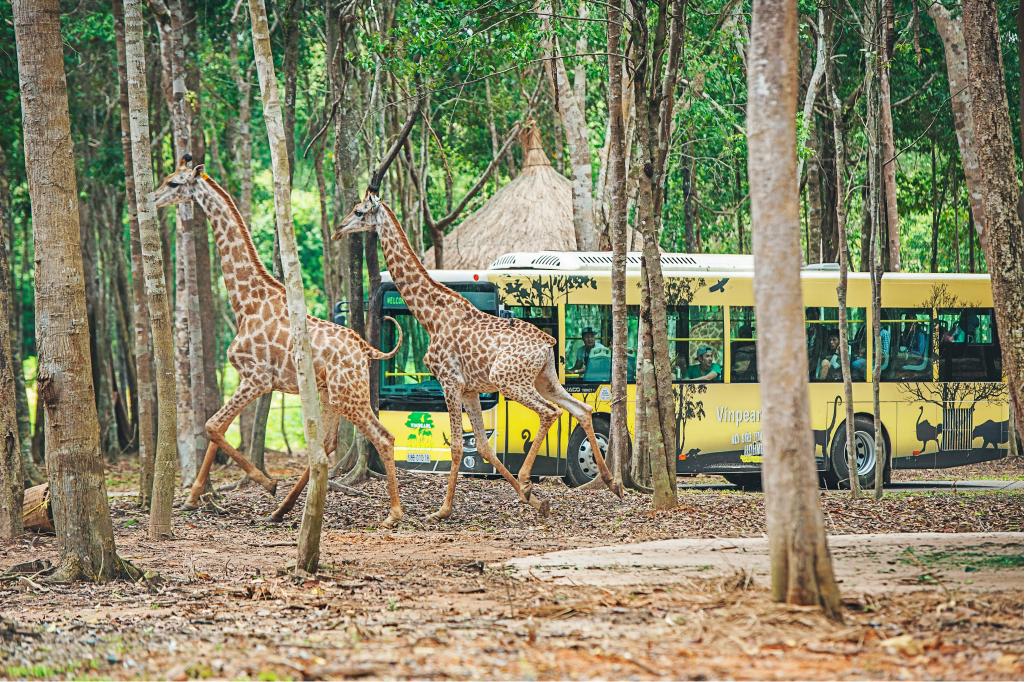 Thăm quan khu bảo tồn động vật hoang dã lớn nhất Việt Nam