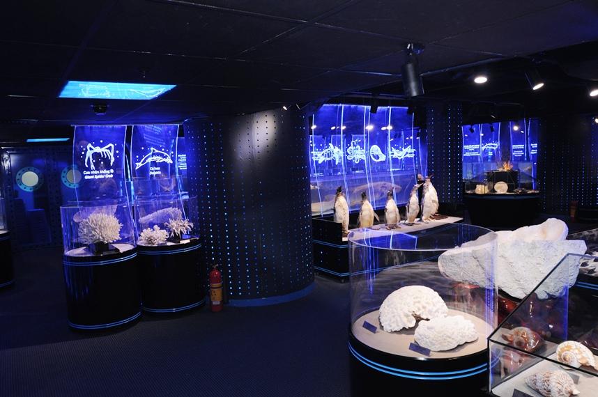 Phòng trưng bày mẫu vật Thủy Cung
