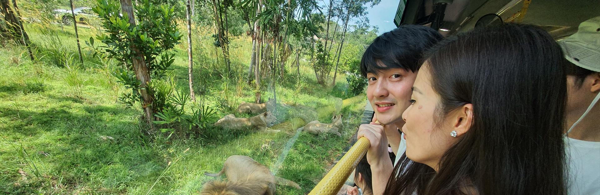 Theo chân vợ chồng son Đông Nhi – Ông Cao Thắng khám phá Vinpearl Safari Phú Quốc